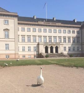 Sorø Akademi med den skønne have ned til Sorø sø